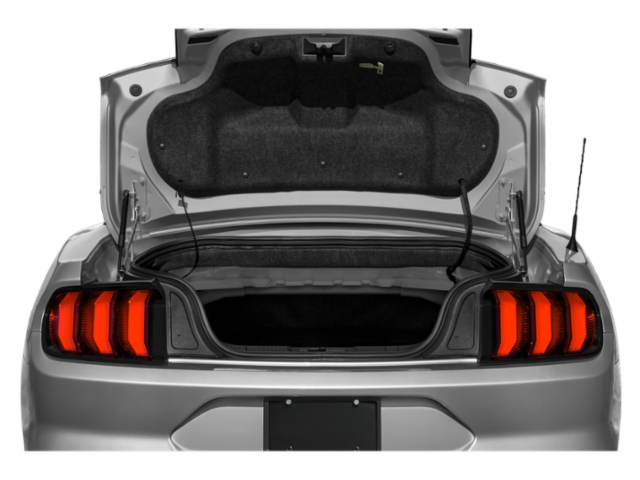 2021 Ford Mustang EcoBoost Convertible image