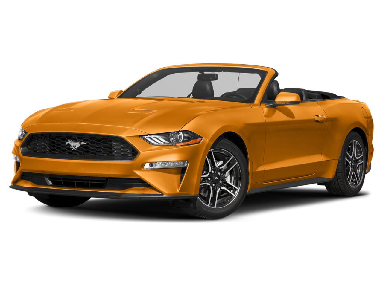 Orange 2019 Ford Mustang GT PREMIUM Convertible Raleigh NC